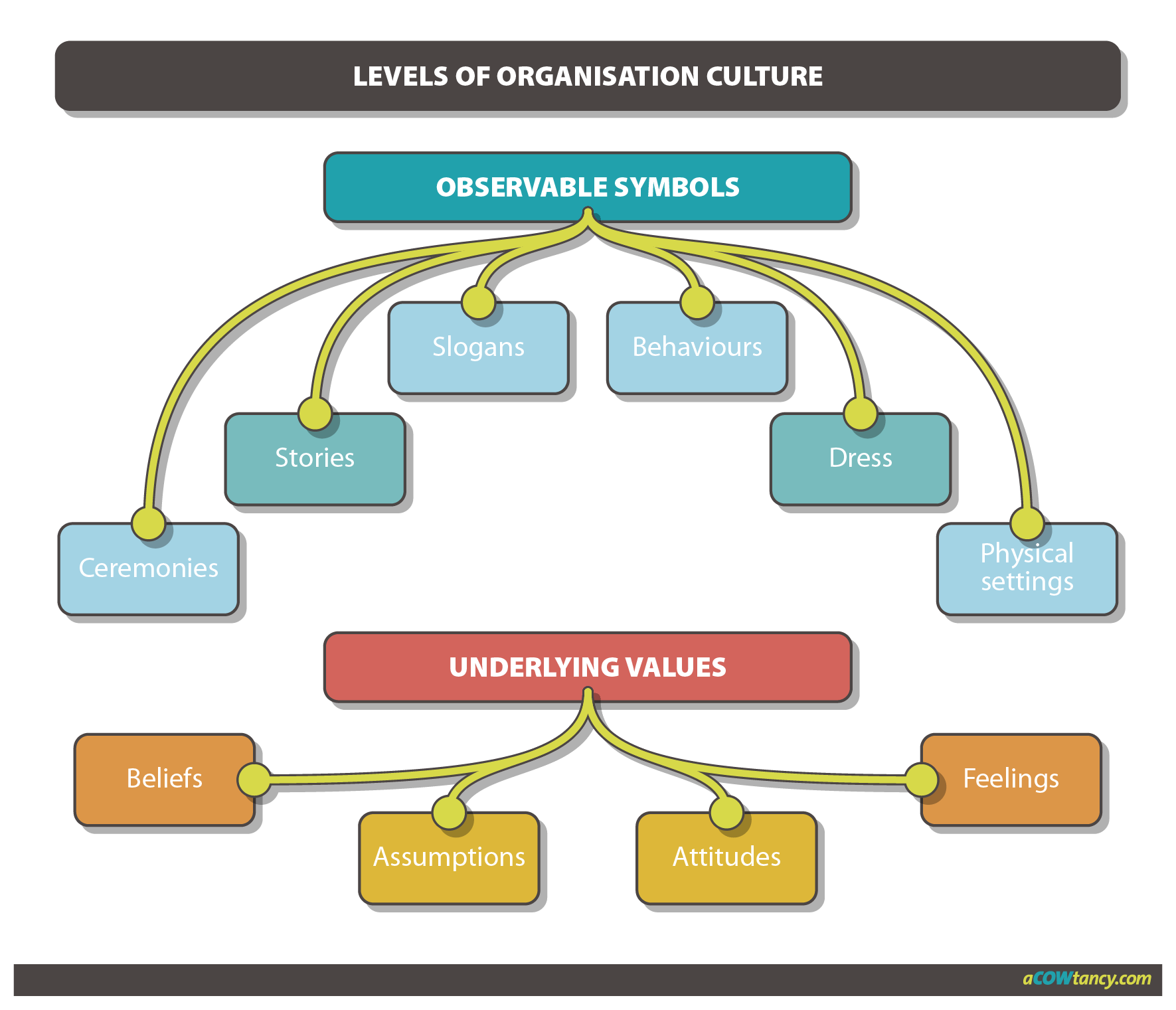 levels of organisational culture