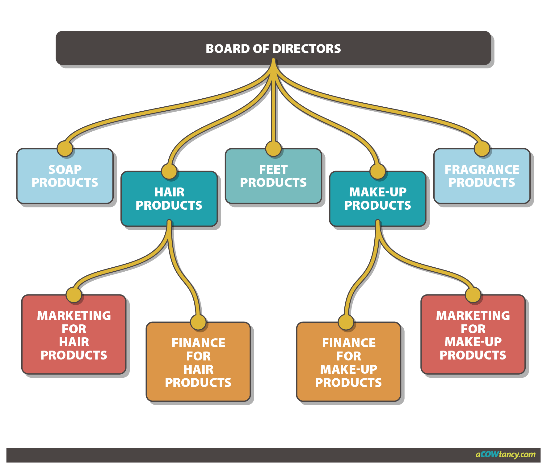 management business organisation notes