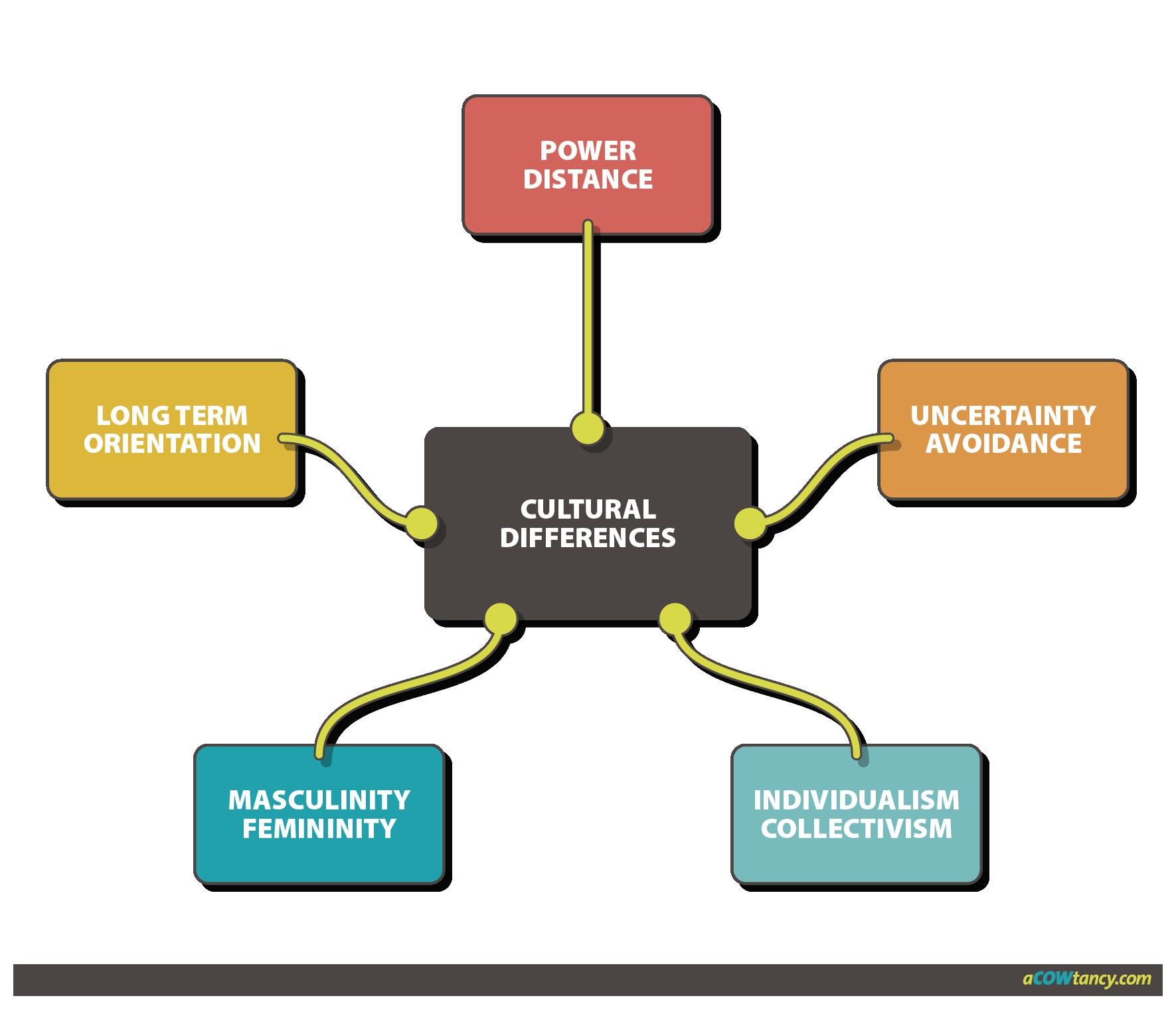 organizational theory case study